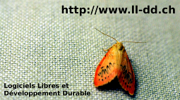 micro-flyer-thumb